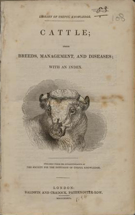 Cattle (Library of Useful Knowledge/Baldwin & Craddock) (image)