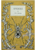 Spiders (King Penguins series) (image)